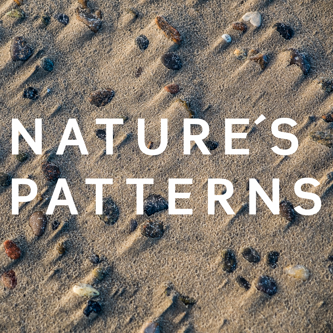 Nature´s Patterns